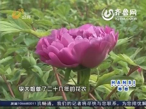 2014年02月25日《逍遥游》:菏泽牡丹区 一朵花惊艳一个城