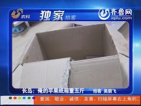 独家拍客:长岛:俺的苹果纸箱重五斤