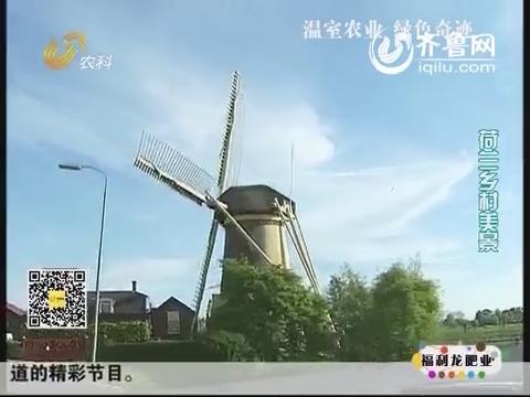 乡村季风海外版:荷兰:温室农业 绿色奇迹