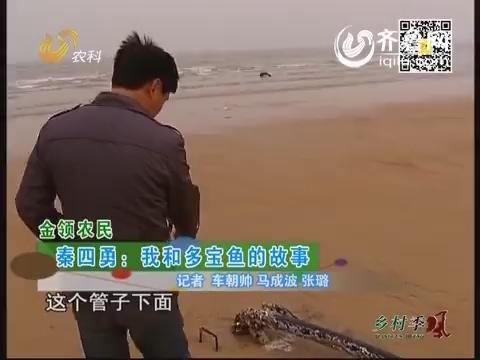 秦四勇:我和多宝鱼的故事