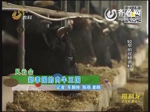 风云会:郑孝国的肉牛王国