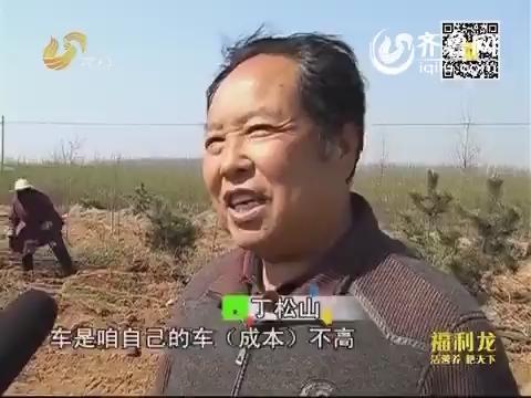金领农民:临沂:一个企业家的农业梦
