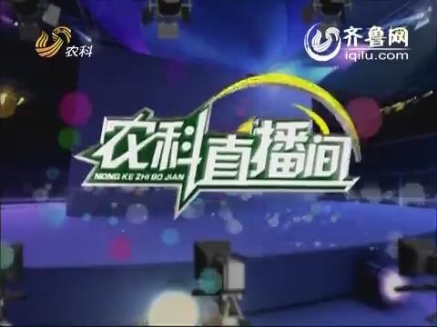 农科直播间20140408:蔬菜专家 刘春香