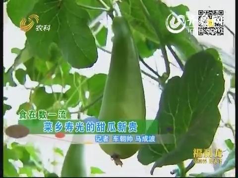 食在数一流:菜乡寿光的甜瓜新贵