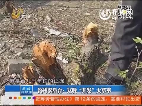 """滨州秦皇台:这般""""开发""""太草率"""