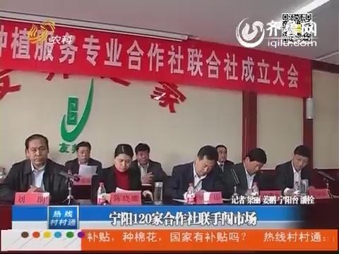 宁阳120家合作社联手闯市场