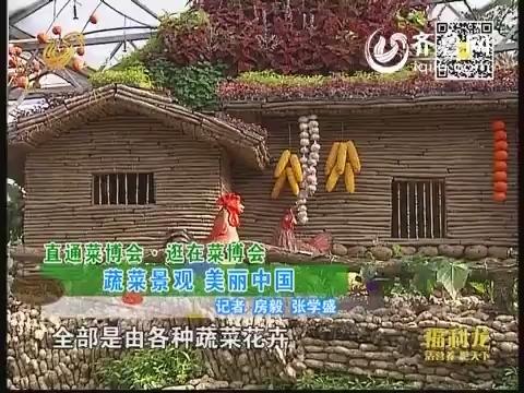 直通菜博会·逛在菜博会:蔬菜景观 美丽中国