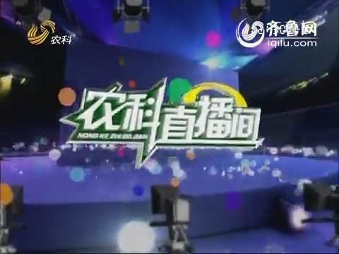 农科直播间20140422:蔬菜专家 刘春香