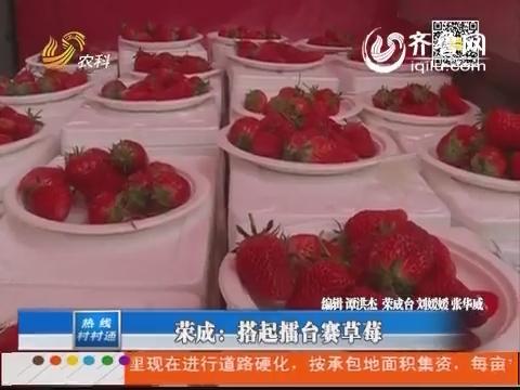 荣成:搭起擂台赛草莓