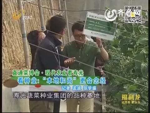 """直通菜博会·现代农业看寿光 看种业:""""本地和尚""""更会念经"""