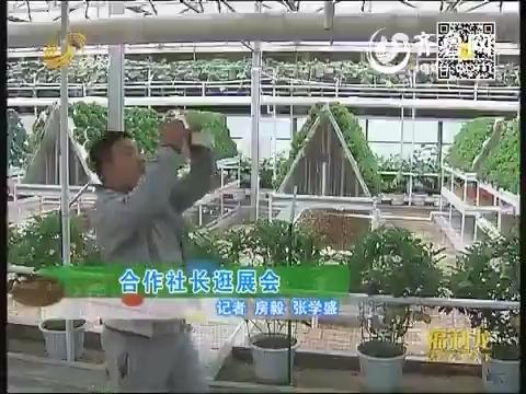 直击菜博会:合作社长逛展会