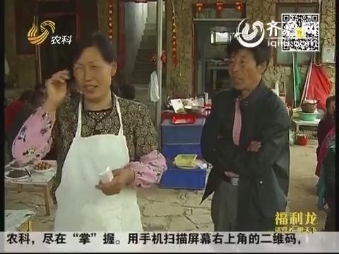 小郑串门·农家乐的老板们:青春 相爱 翠屏山