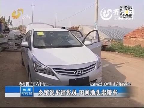 农村新三百六十行:乡镇汽车销售员 田间地头卖轿车