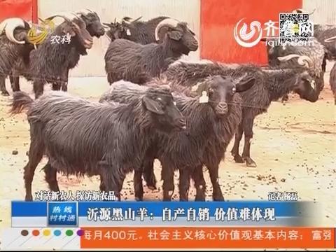 对话新农人探访新农品:沂源黑山羊:自产自销 价值难体现