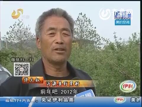 淄博:为多赚点钱 他把苹果存在保鲜库