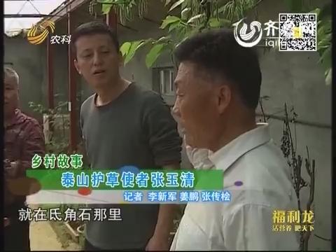 乡村故事:泰山护草使者张玉清