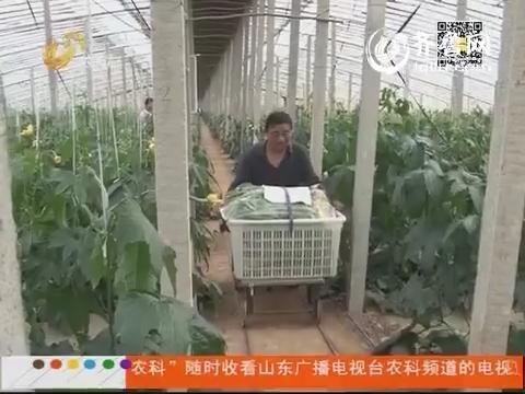 莘县:大棚用上遥控运输车