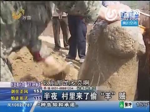 齐河:镇村之宝显丢失 清朝石羊被找回