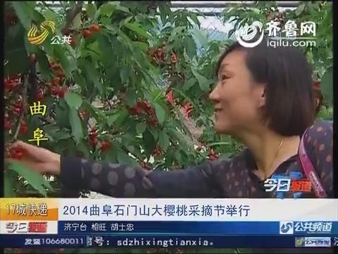 2014曲阜石门山大樱桃采摘节举行
