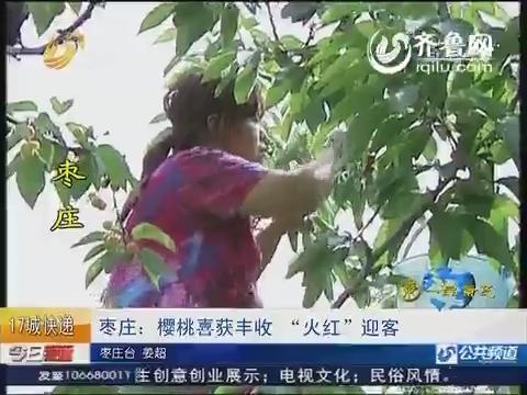 """枣庄:樱桃喜获丰收""""火红""""迎客"""