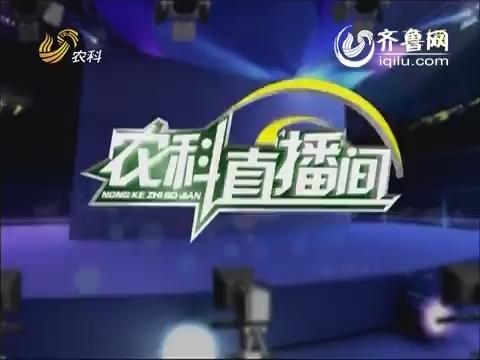 农科直播间20140520:蔬菜专家 刘春香