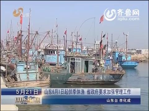 山东6月1日起伏季休渔  省政府要求加强管理工作