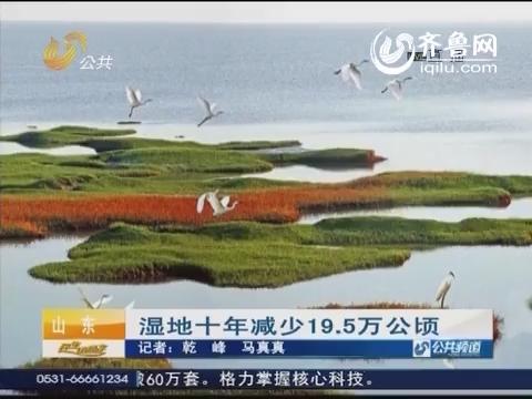 湿地十年减少19.5万公顷