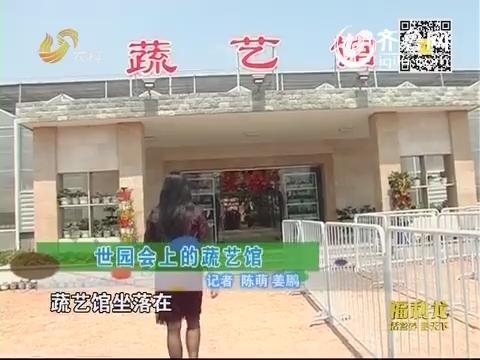 乡村季风海外版:世园会上的蔬艺馆