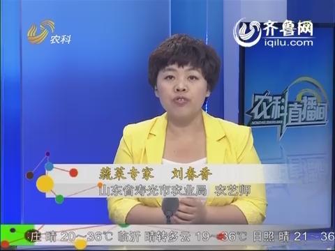 农科直播间20140527:蔬菜专家 刘春香