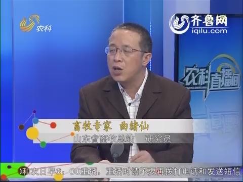 农科直播间20140528:畜牧专家 曲绪仙