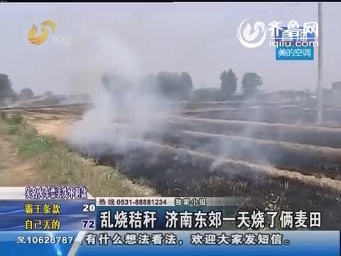 乱烧秸秆 济南东郊一天烧了俩麦田