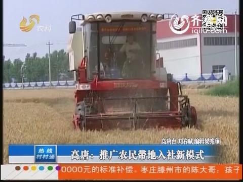 高唐:推广农民带地入社新模式
