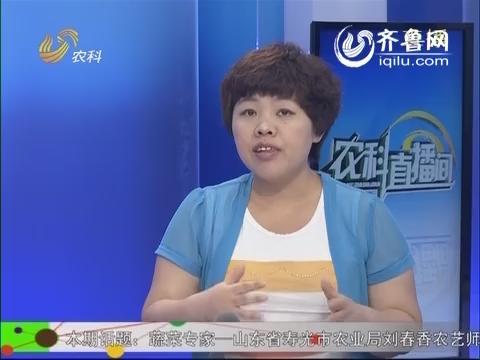 农科直播间20140610:蔬菜专家 刘春香