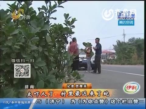 济南:太吓人了 村里最近来了蛇