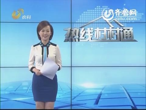 新闻面孔:李岩:城里人的田园梦