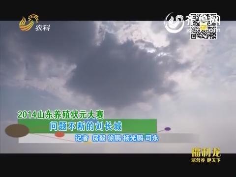 2014山东养殖状元大赛 问题不断的刘长城