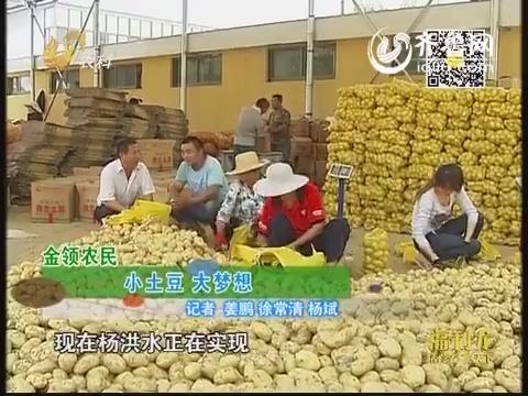 金领农民:小土豆 大梦想