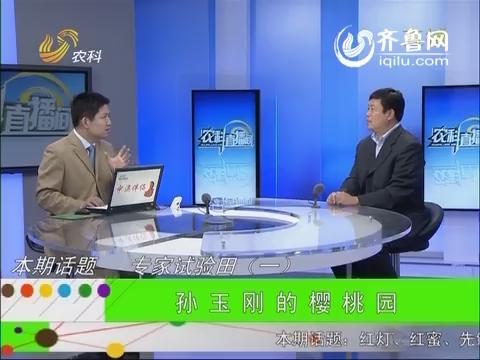 农科直播间20140620:专家试验田(一) 孙玉刚的樱桃园