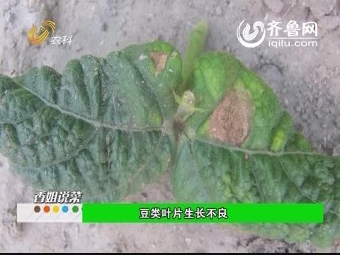 农科直播间20140621:精编版