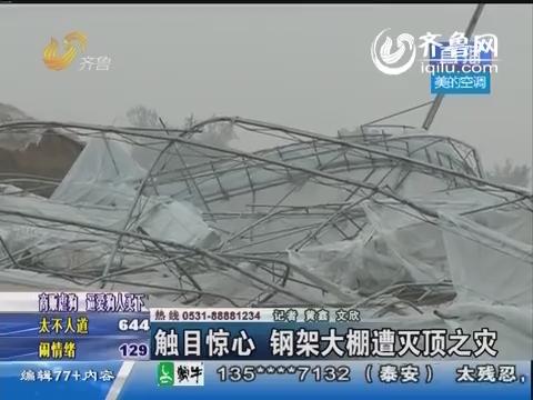 商河:触目惊心 钢架大棚遭灭顶之灾
