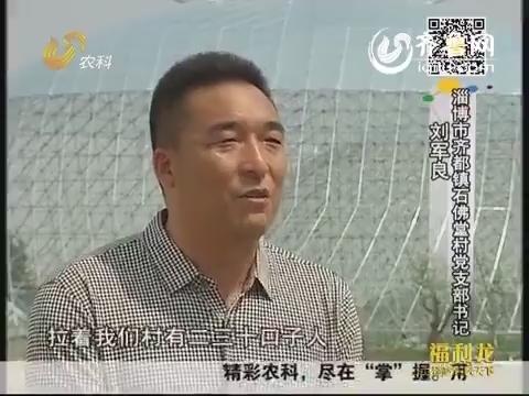 金领农民刘军良:走农业创新之路