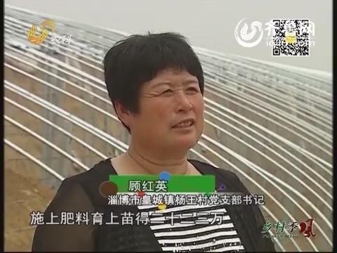 乡村故事:风风火火胖嫂书记