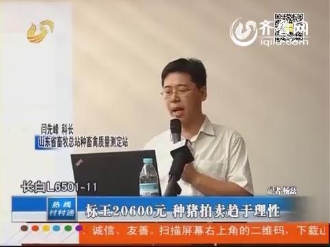 标王20600元 种猪拍卖趋于理性