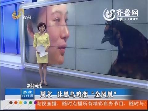 """【新闻面孔】大学生村官周文:让黑乌鸡变""""金凤凰"""""""