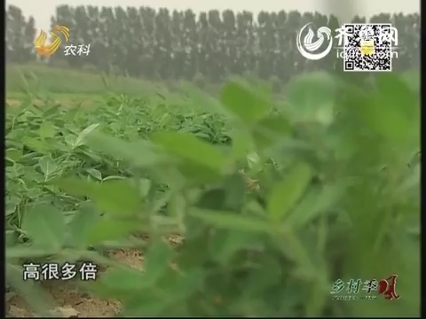 20140715乡村季风