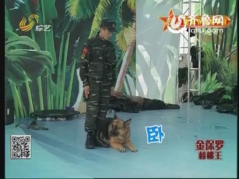 快乐向前冲:老兵与警犬的离别 让人哽咽