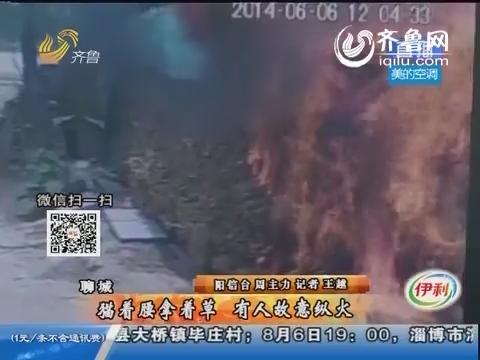 聊城:猫着腰拿着草 有人故意纵火