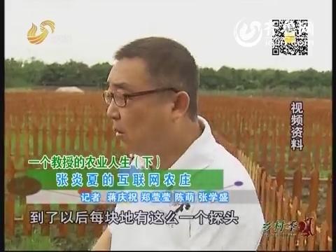 一个教授的农业人生(下) 张炎夏的互联网农庄