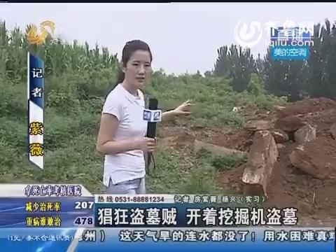 东平:猖狂盗墓贼 开着挖掘机盗墓