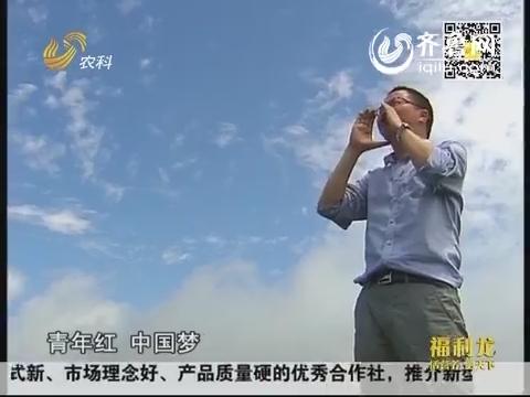 舌尖上的安全·放心农业中国行:80后政协委员种出生态茶